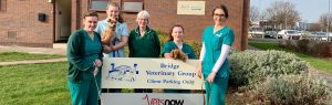 Veterinary nursing team at Bridge Veterinary Group